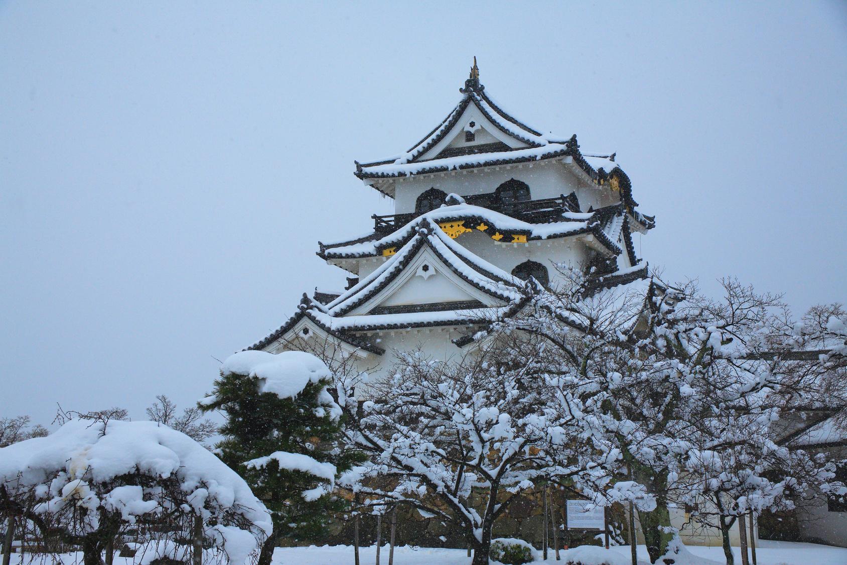 彦根城の漆喰