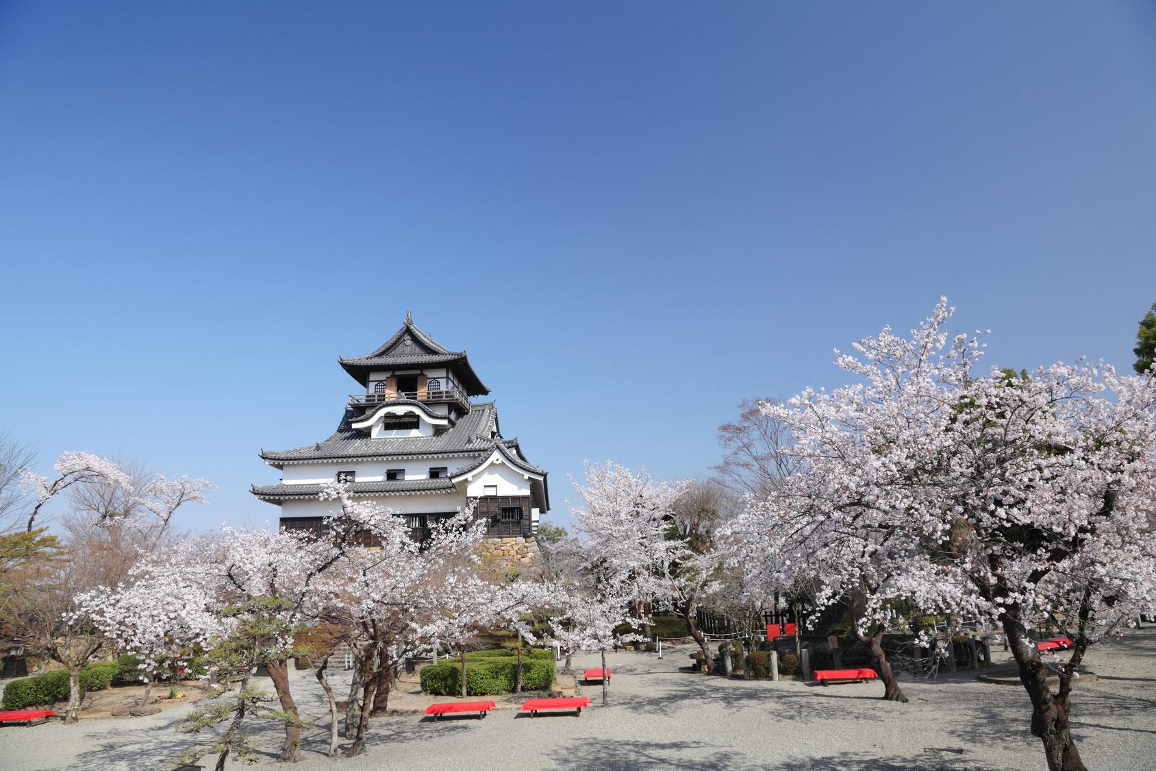 犬山城の漆喰