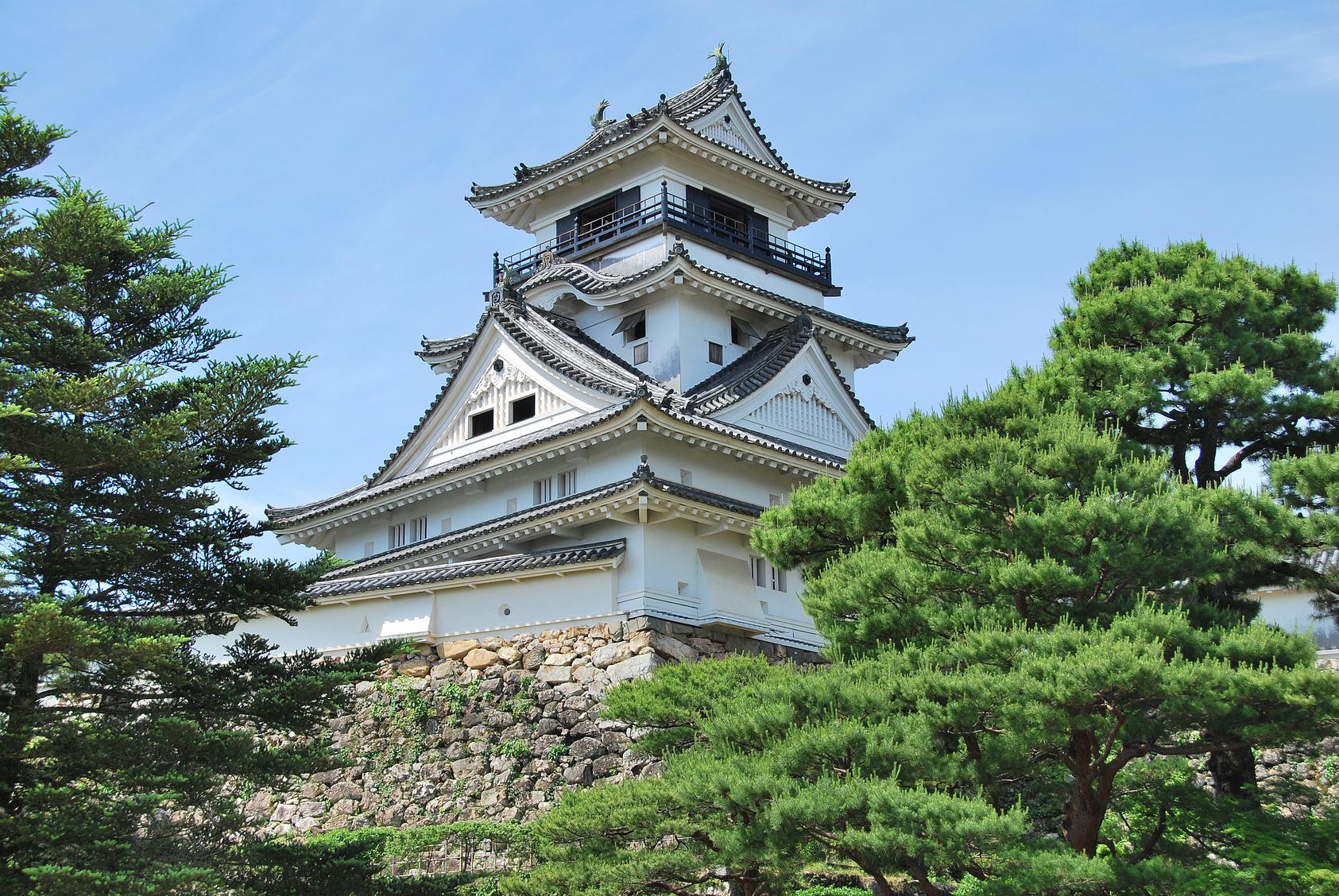 高知城の漆喰